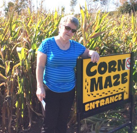entering-a-corn-maze