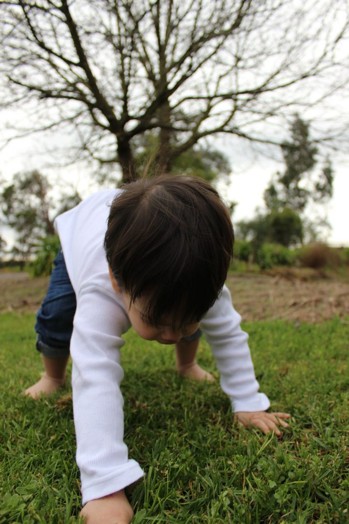 toddler boy on all fours trying to take first steps
