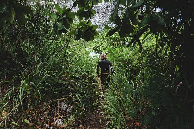 woman battling way through undergrowth of jungle