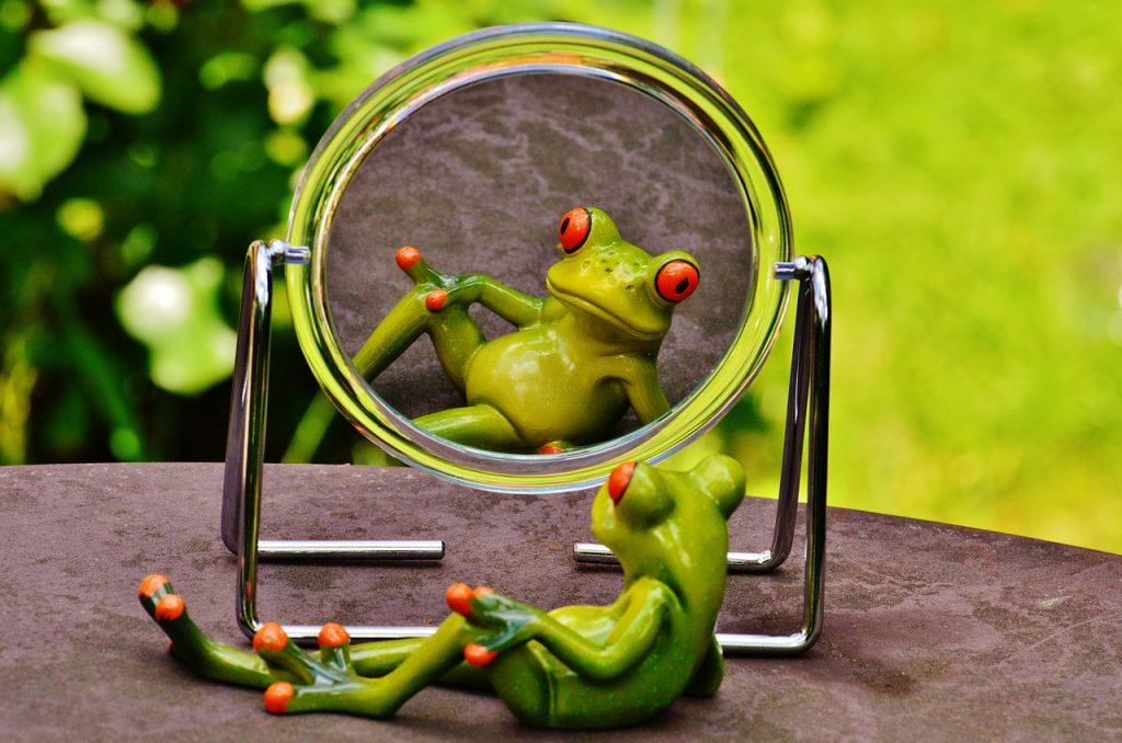 green ceramic frog looking in gazing in mirror