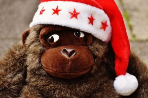 closeup of head of toy monkey wearing red Christmas cap