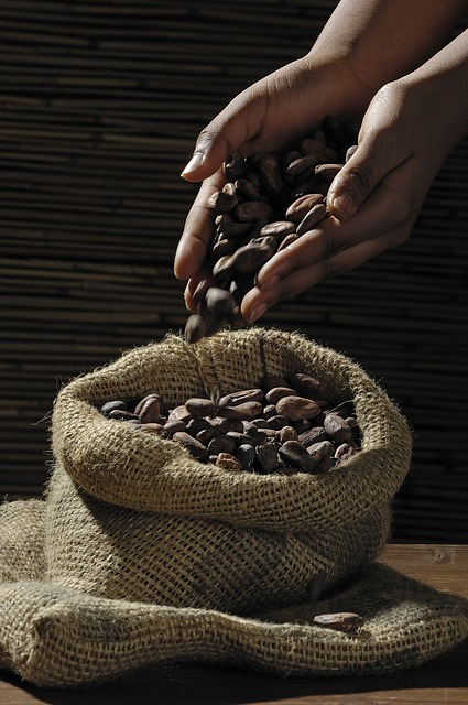 hands holding cocao beans over an open bag