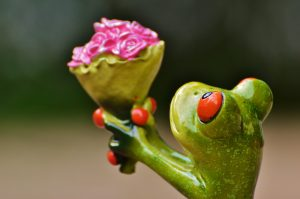 closeup of ceramic frog extending bouquet of flowers