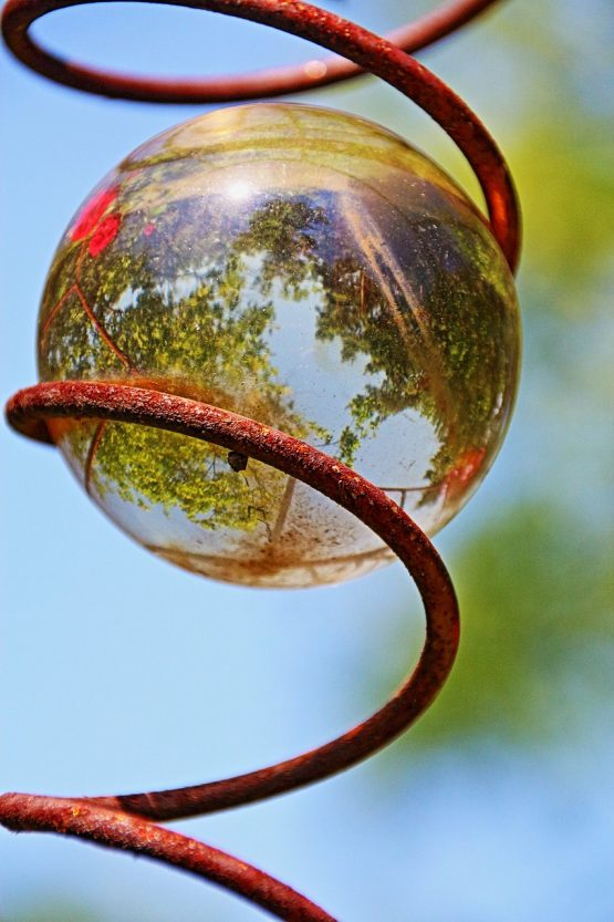 glass ball reflection of trees