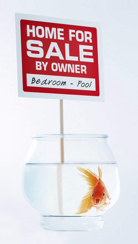 goldfish in bowl with home for sale sign