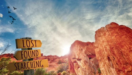 sign in desert - lost, found, searching
