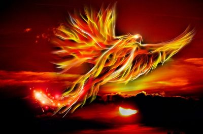 phoenix made of flames