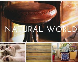 hygge photo collage natural environment in home