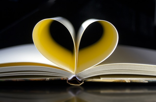 pages of notebook curved to form heart