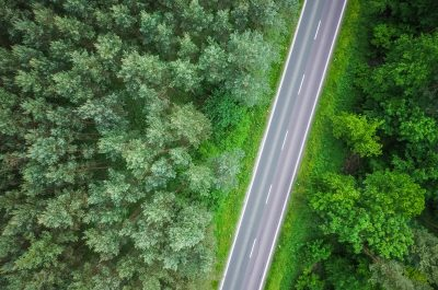 Aerial view of highway among green trees