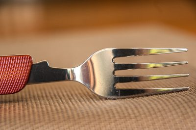 tines of a fork on its side