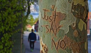 words just say no carved into a tree
